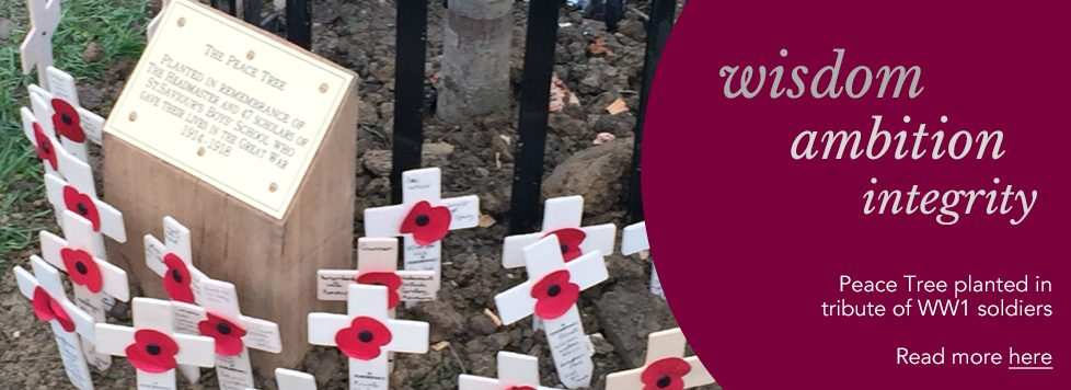 Peace Tree planted in tribute of WW1 soldiers